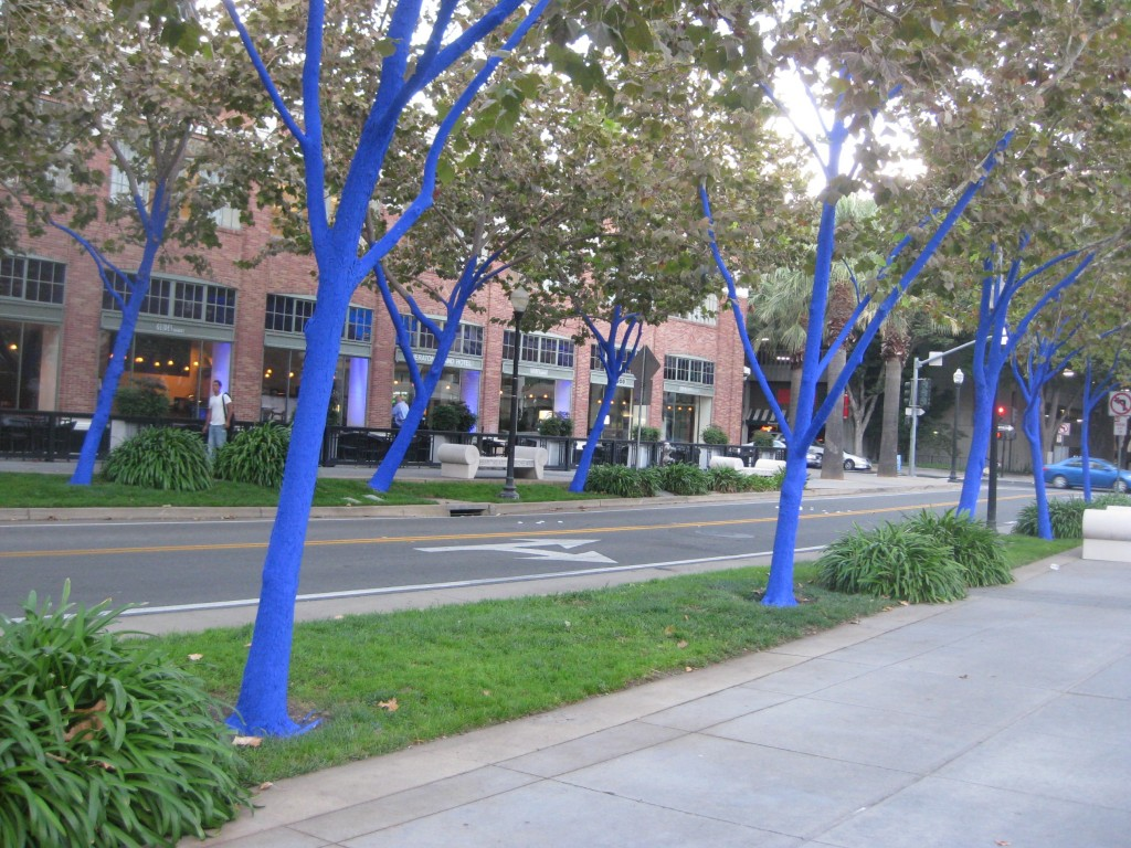 Post image for Blue Trees ~ 13th & K